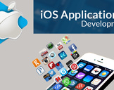 Impact Of Custom Ios Application Development On Businesses In Tampa