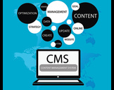 Four Success Factors for CMS Projects