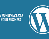 Top Reasons to Use WordPress as a CMS for Your Business