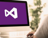 ASP.NET MVC + Entity Framework - Pro Techniques for success
