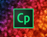 Adobe Captivate 2017 - Responsive Custom Quiz Questions