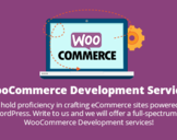 Why is WooCommerce the Best Ecommerce Solution for Your Store<br><br>