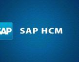 SAP - SAP HCM