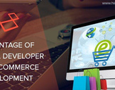 Huge Benefits of Hiring Laravel Developer for E-commerce Development