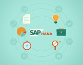 SAP HANA Installation, Operation and Administration