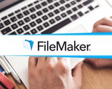 Tutor for Filemaker Pro 13: The Basics