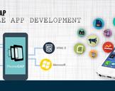 PhoneGap: Explore Thorough Best Cross-Platform To Build Mobile Apps