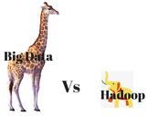 BIG DATA VS HADOOP: Who Will Win?<br><br>