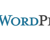 10 Essential WordPress Interview Questions<br><br>