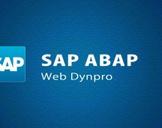 SAP - SAP Web Dynpro ABAP
