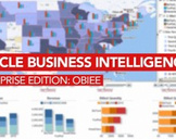 Oracle Business Intelligence Enterprise Edition:  OBIEE