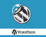 WordPress Video Tutorial for the absolute beginner
