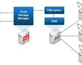 Realize Quantifiable Cost Savings with IBM Tivoli Storage Manager<br><br>