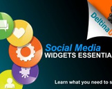 Social Media Widgets Essentials