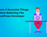 Top 9 Things To Know Before Selecting The WordPress Developer<br><br>