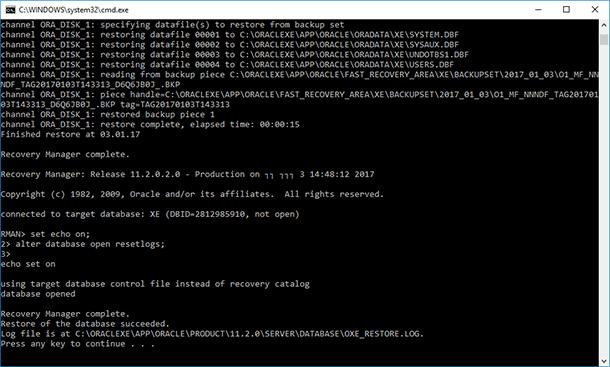 Oracle Database Data: Backup and Restore - Image 24