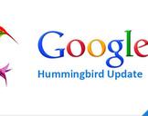 Google's Various Algorithm Updates