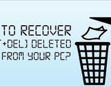 Restore or Undelete Files by shift+del+enter deleted files.