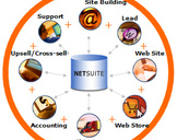 NetSuite Allows Ecommerce Sites to Integrate their Business and Look for Better Response From The Ma...