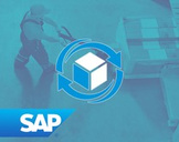 SAP WM Warehouse Management