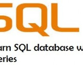 SQL  Database  with Queries