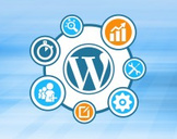 Easy SEO For Wordpress