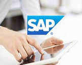 Become an expert in the new SAP Activate Methodology.