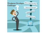 Challenges Faced By WordPress Developers