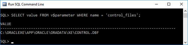 Oracle Database Data: Backup and Restore - Image 5