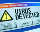 Computer Viruses: 5 Tips to Avoid the Problem