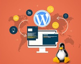 Installation of Wordpress Through Linux Shell