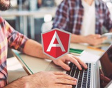 AngularJS Fundamentals and Practice