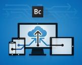 Responsive Web Design using Adobe Business Catalyst