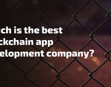 Which is the best Blockchain app development company?