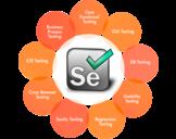Selenium Testing: The Latest QA Testing Technology