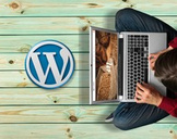 The Complete Wordpress Course - Build Your Own Website Today