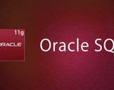 Oracle SQL 11g - Learn Oracle SQL by Examples