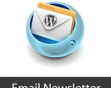 How to Craft Email Newsletters for WordPress?