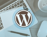 Build The Ultimate Professional Website with WordPress- 2017