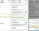How to Clear Search History on iPhone<br><br>
