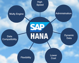 SAP HANA enterprise cloud: How it can ensure a makeover for your business?