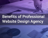 Top 5 Benefits of Hiring a Professional Website Design Agency