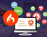 Why to Choose CodeIgniter for Developing your Business Website?
