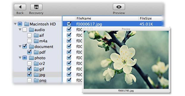 Recovering PowerPoint files on mac - Image 1