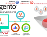 Why Magento is the best E-commerce platform?<br><br>